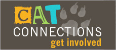 CatConnections - Get Involved