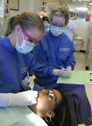 Dentistry what is a college major