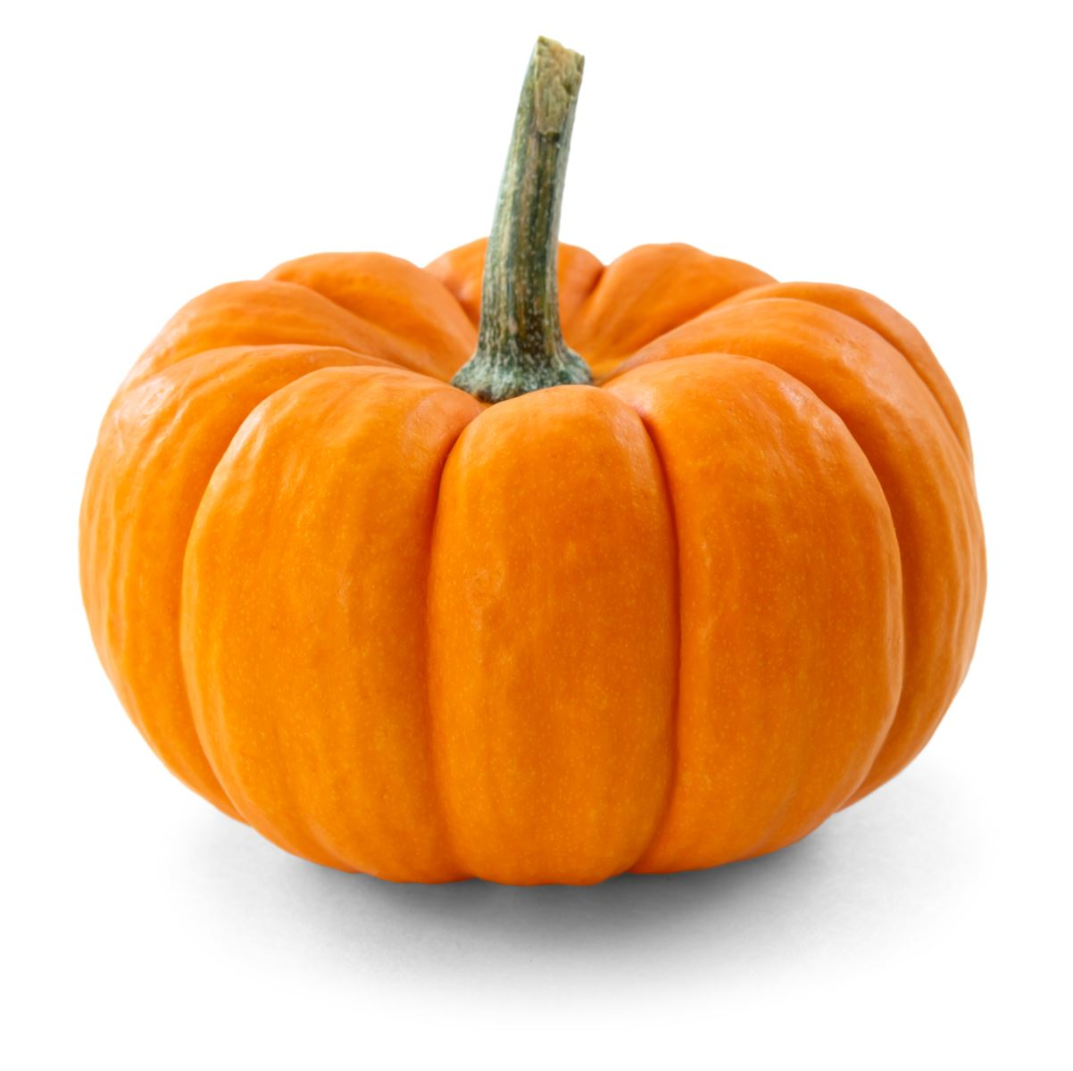 Pumpkin Sale for Students Studying Special Education