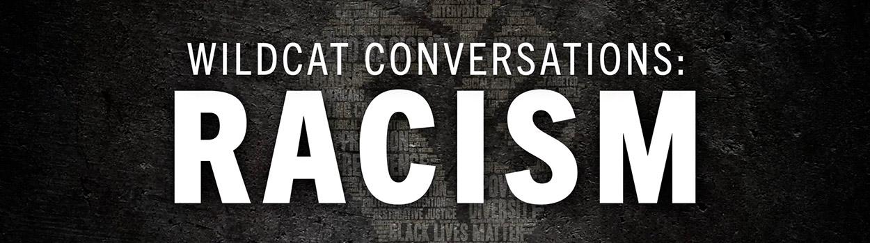 wildcat conversations on racism