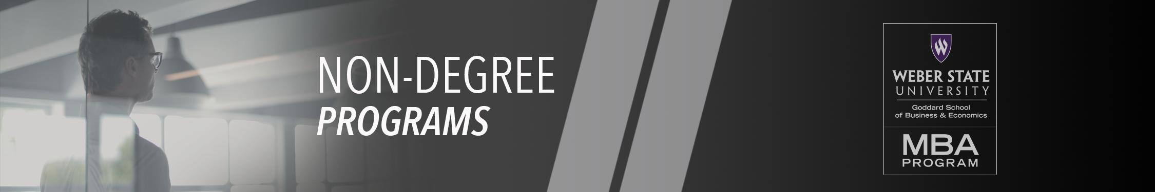 MBA Non-Degree Programs