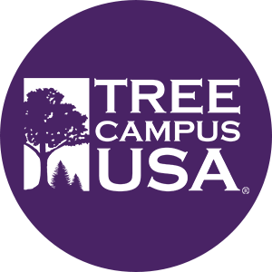A Tree Campus USA Recognized School